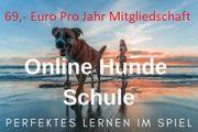Online Hundeschule - Hunde Training