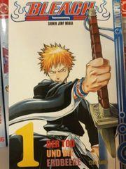 Bleach Manga 1-20