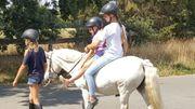 Ausreiten für Kinder - Ponyhof Borstel