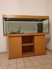Aquarium 450 Liter mit Unterschrank
