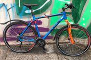 Fahrrad Bulls Cross Bike 1