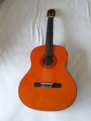 Gitarre C Giant