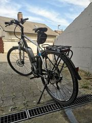 E bike Pegasus Trekking