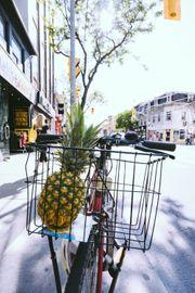 Nachbarschaftshilfe Einkäufe jeglicher Art