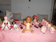 Dachbodenfund-Schildkrötenpuppe-5 Keramik Köpfe1alter Bär-verschiedene Puppen