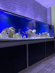 Aquarium 250 60 60 12