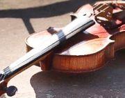 Suche kaputte Geige