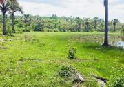 Brasilien - Millionär werden - Tiefpreis-Grundstück kaufen