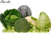 20 Kohlmix Samen Gemüse verschiedene