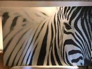 Ikea Zebra Bild 118cm x