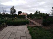 Pachtgarten mit Gartenlaube und Geräteschuppen