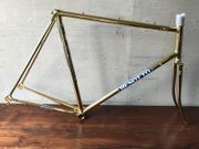 BENOTTO Campagnolo Rahmen in Gold