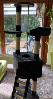 Komplettes Katzenzubehör Kratzbaum katzentransportbox katzenkorb