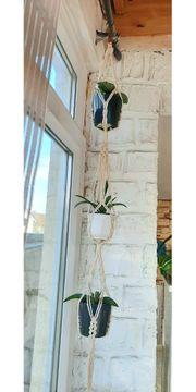 Makramee Blumenampel Pflanzenampel Pflanzenhänge