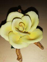 Porzellan Rose aus dem Hause