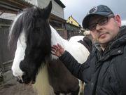 Urlaubsbetreuung für Ihre Pferde Rinder