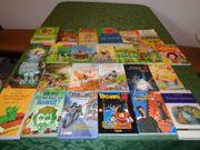 25 Stück Jugendbücher 3