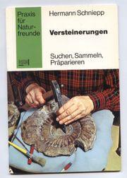 Versteinerungen Suchen Sammeln Präparieren - Hermann