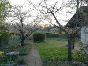 Kleingarten Schrebergarten in Gartenanlage bei