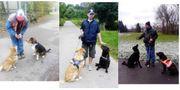 Hundebetreuung Hundesitting mit Herz und