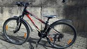 Jugendrad Mountainbike Giant Revel 4