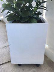 Blumenkübel Pflanzkübel Weiß 40x40x50cm